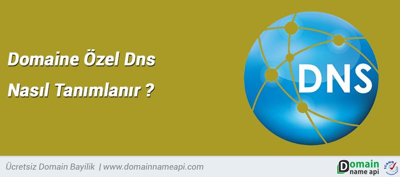 Domaine Özel DNS nasıl tanımlanır?